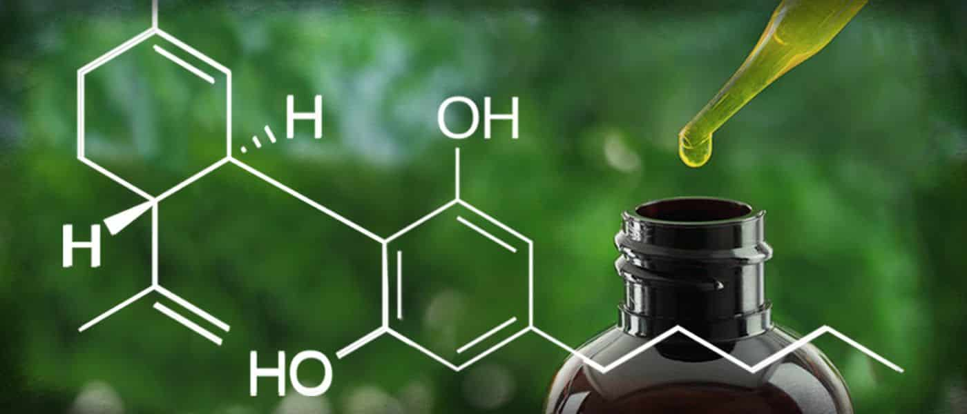 Den ultimative CBD Guide 2020